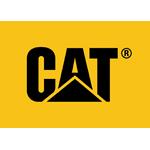 cat-Клиенты-таможенного-брокера